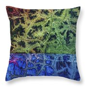 Rhapsody Of Colors 57 Throw Pillow