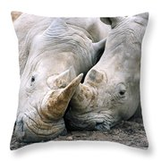 Rhino Love Throw Pillow