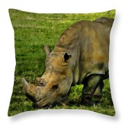 Rhinoceros 101 Throw Pillow