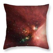 Rho Ophiuchi Throw Pillow