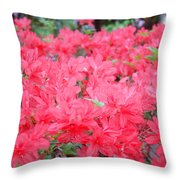 Rhodies Art Prints Pink Rhododendrons Floral Throw Pillow