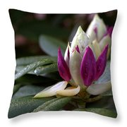 Rhododendron Flower Bud Throw Pillow