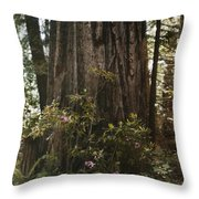 Rhododendrons Bloom Around The Trunk Throw Pillow