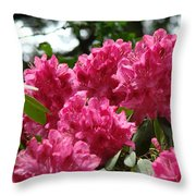 Rhododendrons Garden Art Prints Pink Rhodies Floral Throw Pillow by Baslee Troutman