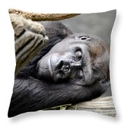 Rhythm Of The Day Throw Pillow