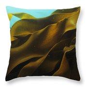 Ribbon Kelp Durvillaea Antarctica Throw Pillow