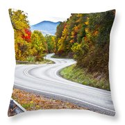Ribbon Road Throw Pillow