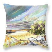 Ribera Del Duero In Spain 13 Throw Pillow