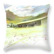 Ribera Del Duero In Spain 15 Throw Pillow