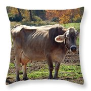 Ribs On A Skinny Cow Throw Pillow