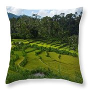 Rice Fields In Agricultural Bali Throw Pillow
