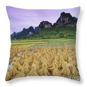 Rice, Yangshuo, Guangxi, China Throw Pillow