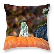 Rich Autumn Colors Throw Pillow