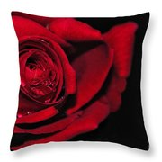 Rich Red Rose Throw Pillow