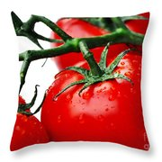 Rich Red Tomatoes Throw Pillow
