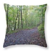 Richland Mine Trail Throw Pillow