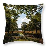 Richmond Park Throw Pillow