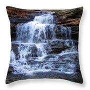 Ricketts Glen Waterfall 4075 Throw Pillow