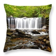 Ricketts Glen Waterfall Oneida Throw Pillow