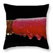 Ride In The Rain Throw Pillow
