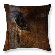 Ride With Trust Throw Pillow