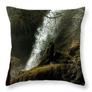Rifle Falls IIi Throw Pillow
