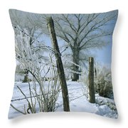 Rime From Rare Fog Coats Fence Throw Pillow