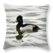 Ring Necked Duck  Throw Pillow