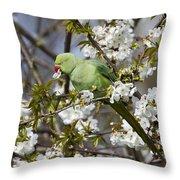 Ring-necked Parakeet Throw Pillow