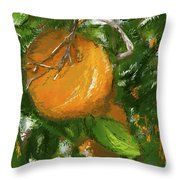 Rio Grande Valley Oranges Throw Pillow