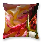 Rio Samba Rose And Bud Throw Pillow