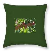 Ripe Fleshy Plums On The Branch Throw Pillow