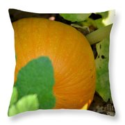 Ripe On The Vine Throw Pillow