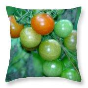 Ripen On The Vine Throw Pillow