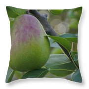 Ripening Pear In Tree Throw Pillow