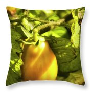 Ripening Roma Throw Pillow