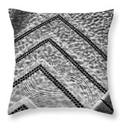 Ripple Effect Bw Palm Springs Throw Pillow