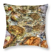 Ripple Effect Throw Pillow
