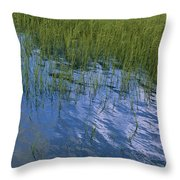Rippling Water Among Aquatic Grasses Throw Pillow