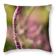 Rising Purple Throw Pillow
