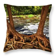 River And Roots Throw Pillow