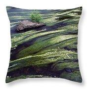 River Bandon, County Cork, Ireland Throw Pillow