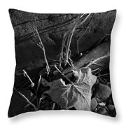 River Bed Sycamore Leaf Throw Pillow