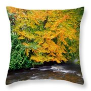 River Camcor In The Fall  Co Offaly Throw Pillow