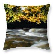 River Camcor Throw Pillow