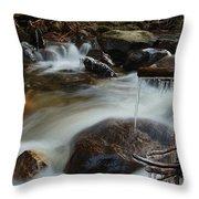 River Detail Throw Pillow