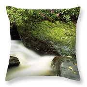 River Flowing Through A Forest, Torc Throw Pillow