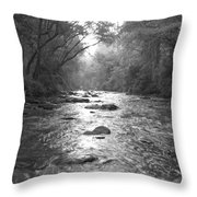 River Gaze Throw Pillow