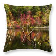 River Ghosts Throw Pillow