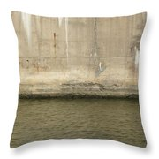 River In The City 2 Throw Pillow